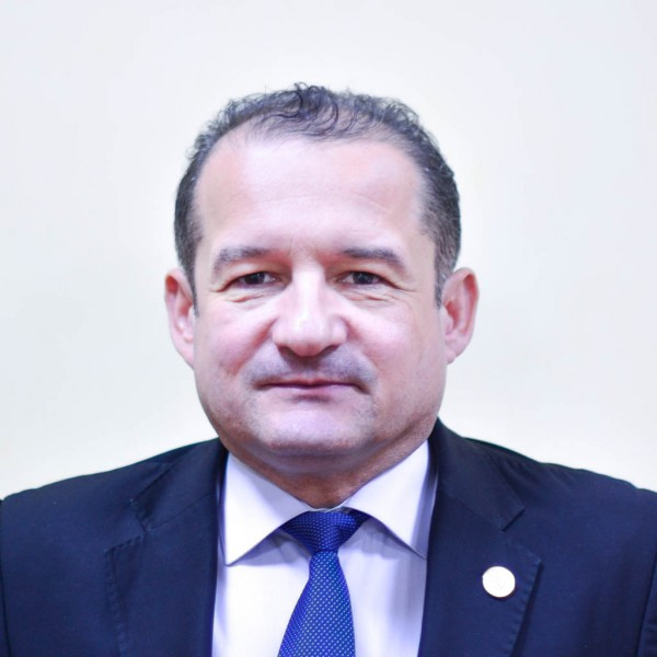 Prof. univ. dr. ing. Neculai Eugen SEGHEDIN